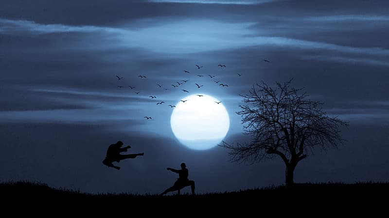 Silhouetted figures fighting in martial arts and kung fu against a large moon.
